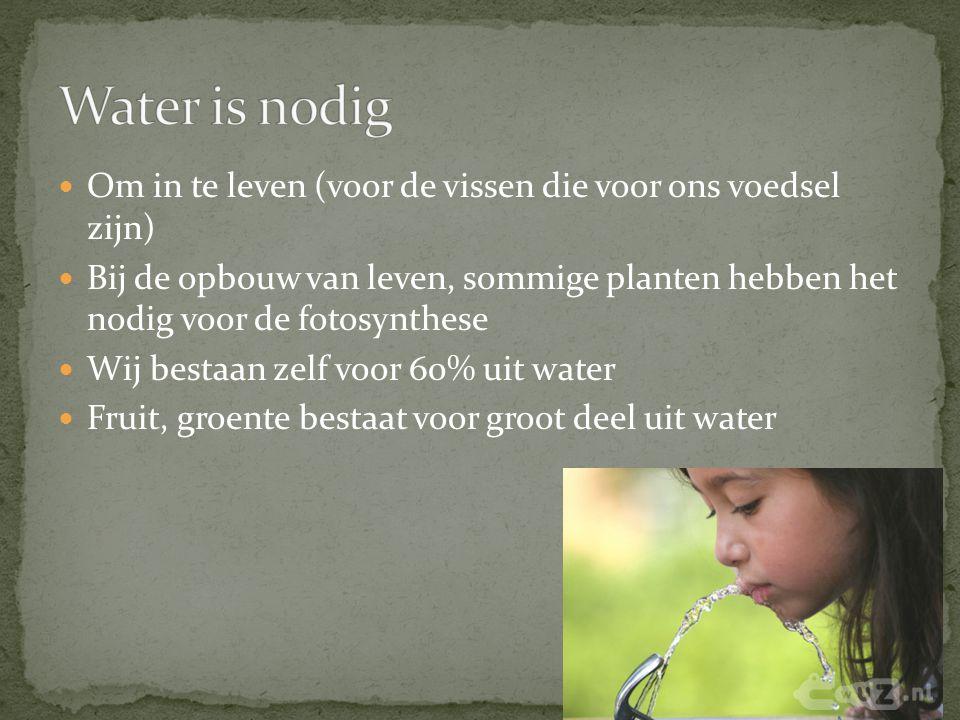 Water is nodig Om in te leven (voor de vissen die voor ons voedsel zijn)