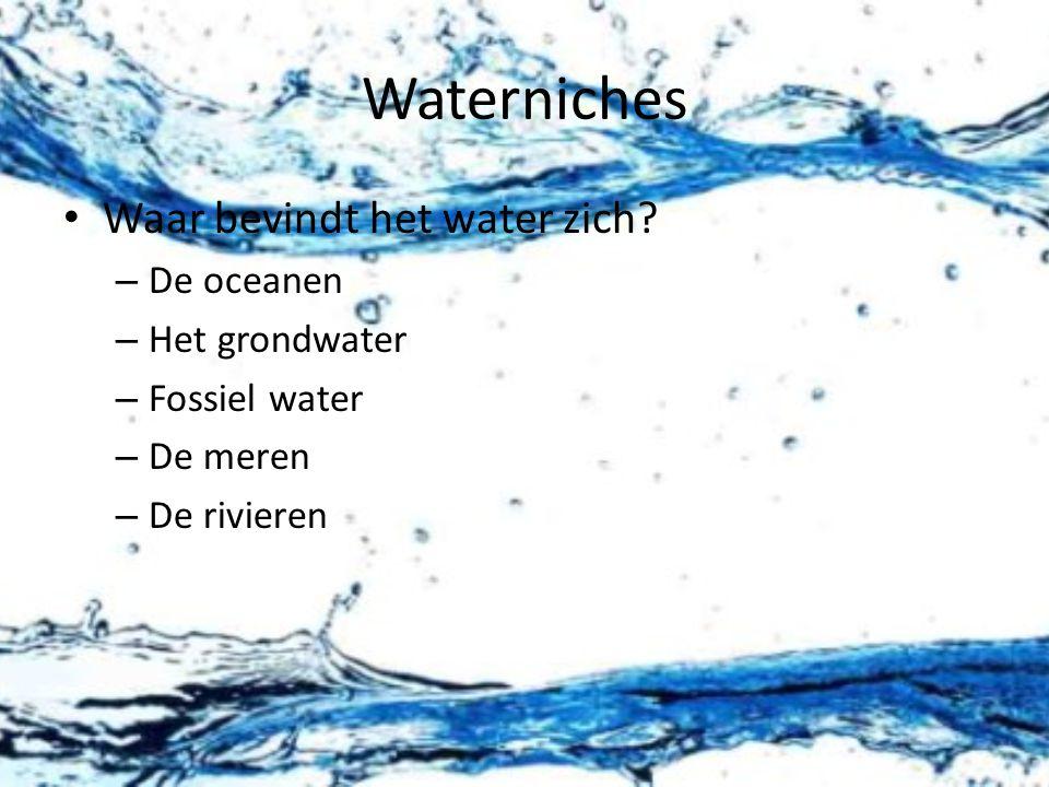 Waterniches Waar bevindt het water zich De oceanen Het grondwater