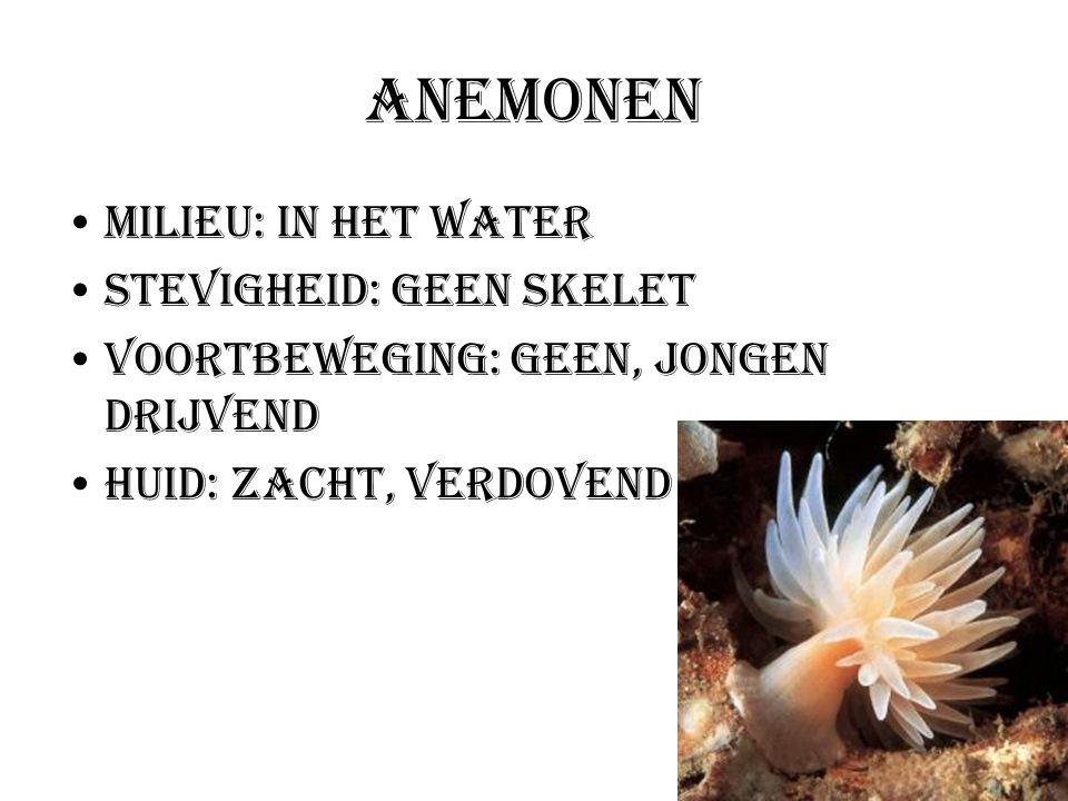 Anemonen Milieu: In het water Stevigheid: Geen skelet