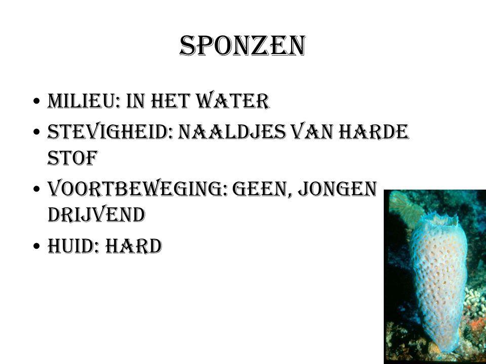 Sponzen Milieu: In het water Stevigheid: Naaldjes van harde stof