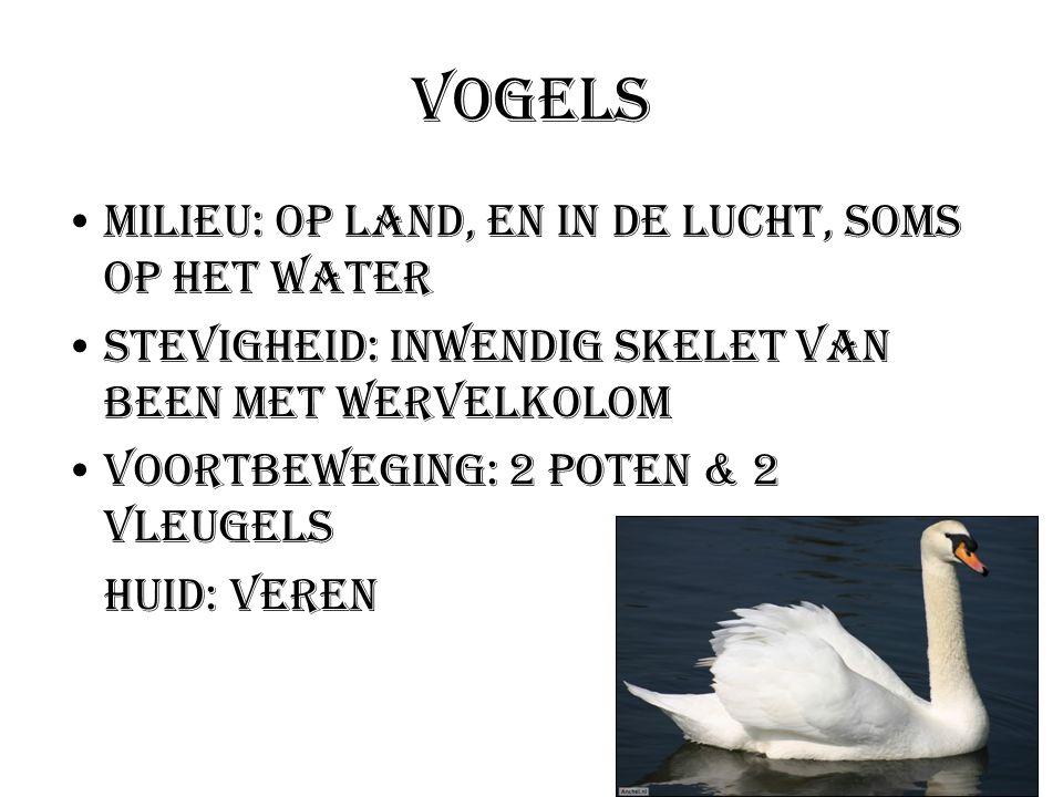 Vogels Milieu: Op land, en in de lucht, soms op het water