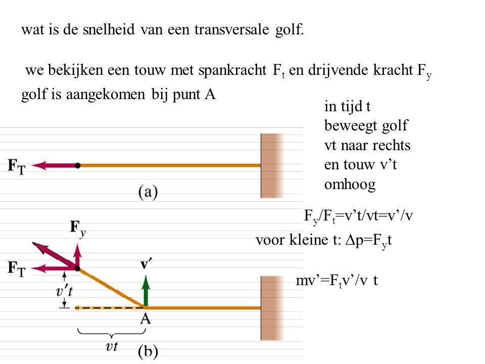 wat is de snelheid van een transversale golf.