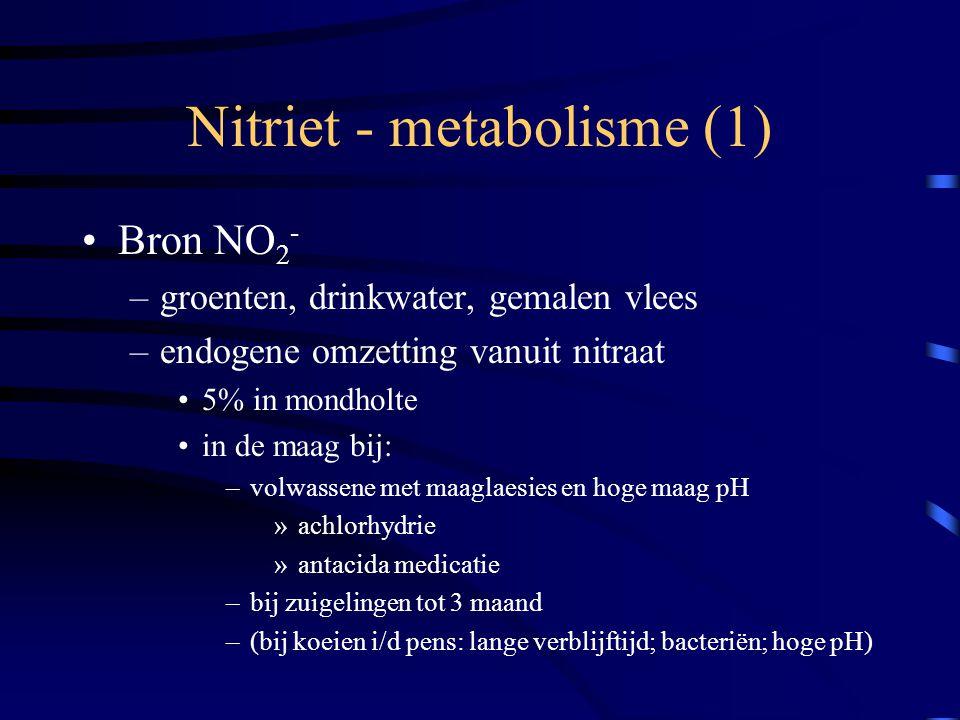 Nitriet - metabolisme (1)