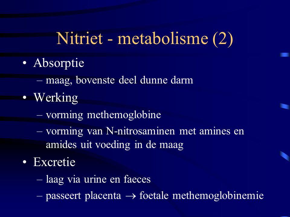 Nitriet - metabolisme (2)