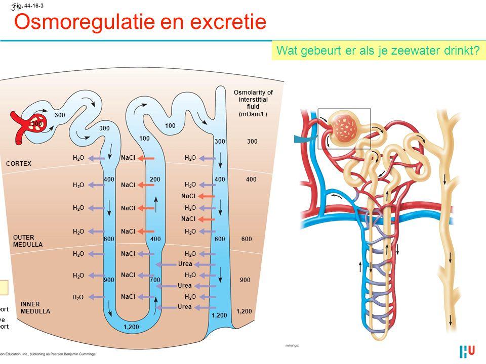 Osmoregulatie en excretie