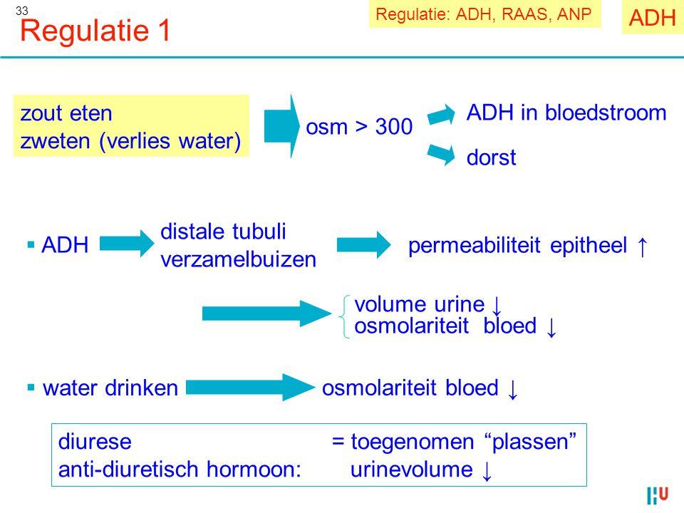 Regulatie 1 ADH zout eten zweten (verlies water) osm > 300