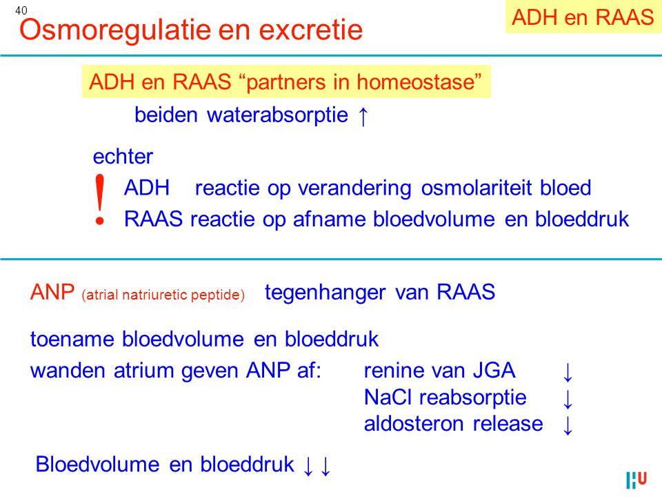 ! Osmoregulatie en excretie ADH en RAAS