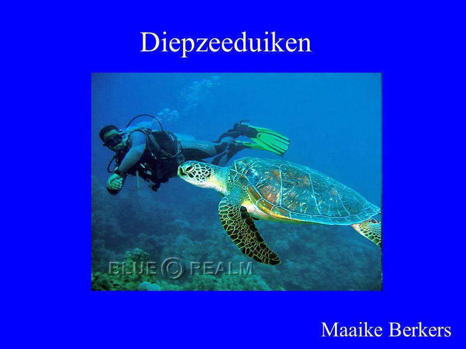 Diepzeeduiken Maaike Berkers