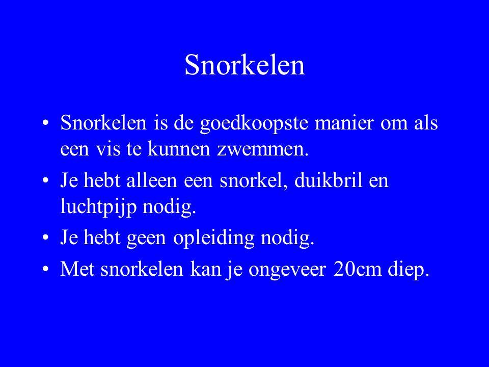 Snorkelen Snorkelen is de goedkoopste manier om als een vis te kunnen zwemmen. Je hebt alleen een snorkel, duikbril en luchtpijp nodig.