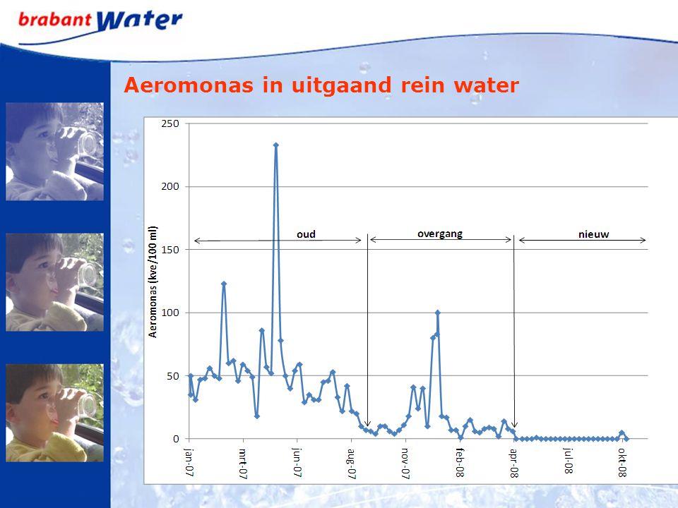 Aeromonas in uitgaand rein water