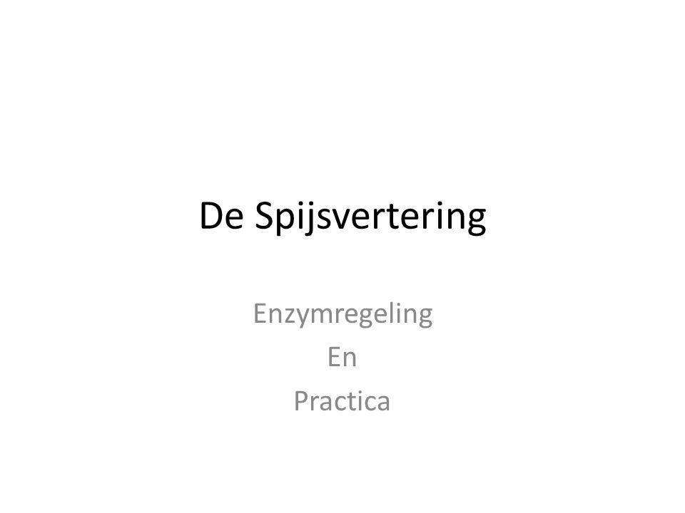 Enzymregeling En Practica