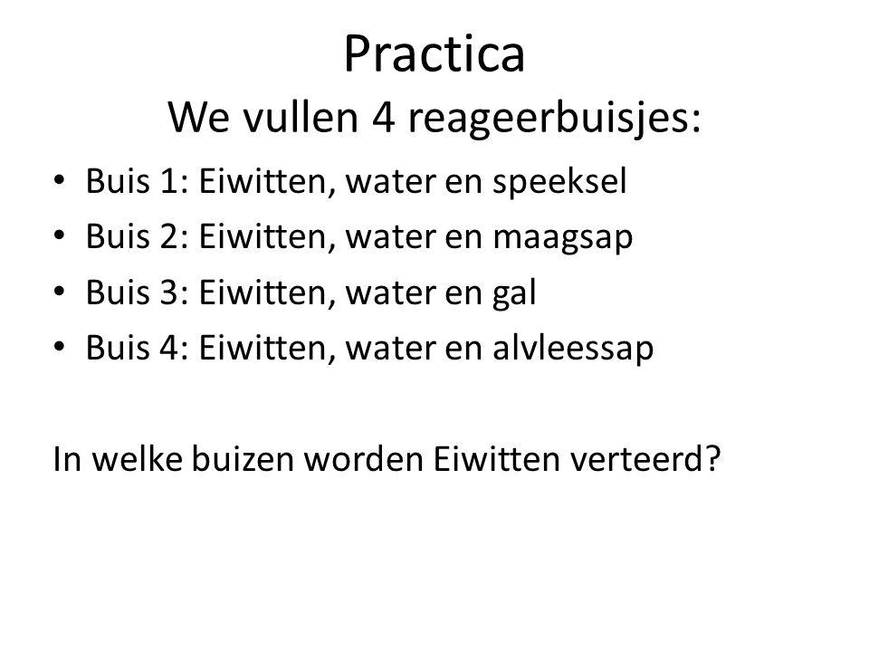 Practica We vullen 4 reageerbuisjes: