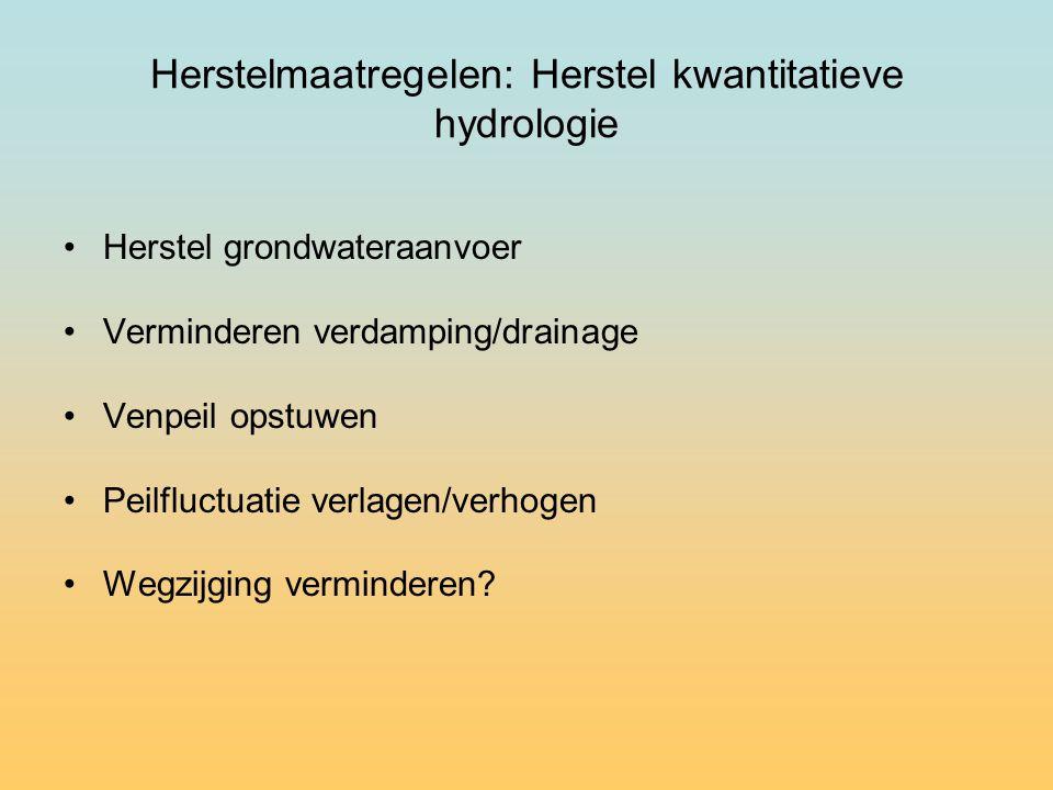 Herstelmaatregelen: Herstel kwantitatieve hydrologie