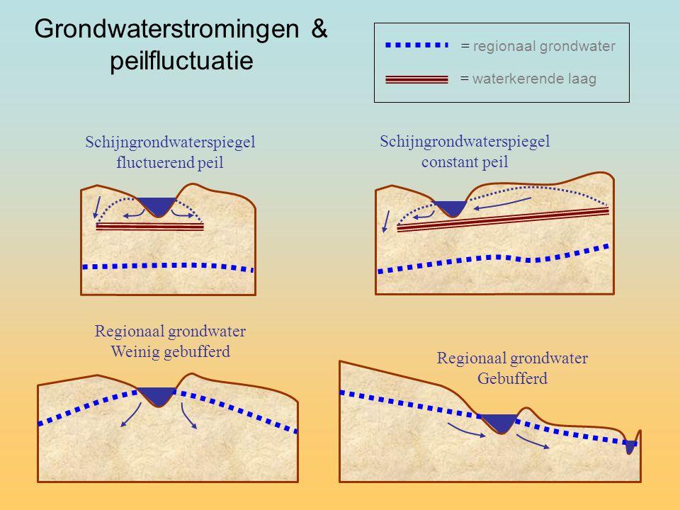 Grondwaterstromingen & peilfluctuatie