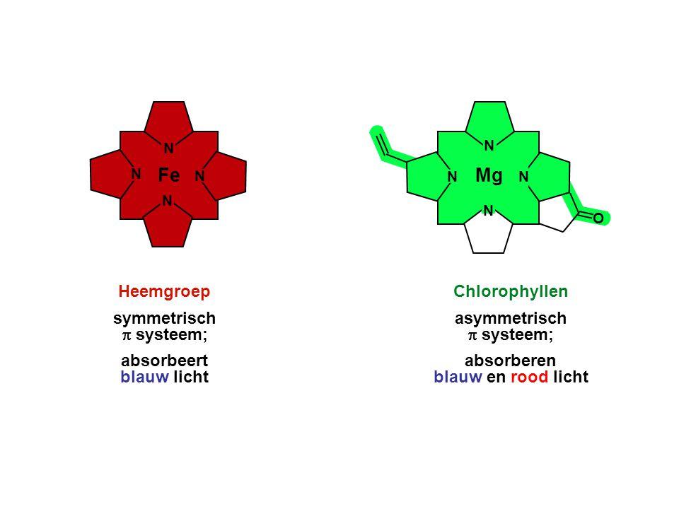 Fe Mg Heemgroep symmetrisch p systeem; absorbeert blauw licht