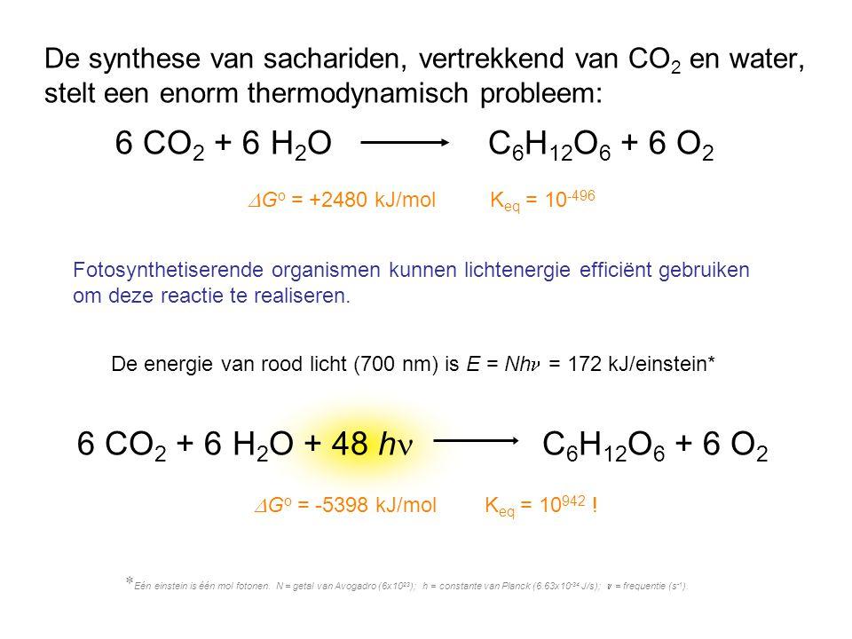 6 CO2 + 6 H2O C6H12O6 + 6 O2 6 CO2 + 6 H2O + 48 hn C6H12O6 + 6 O2