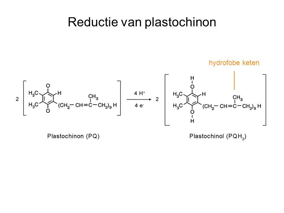 Reductie van plastochinon