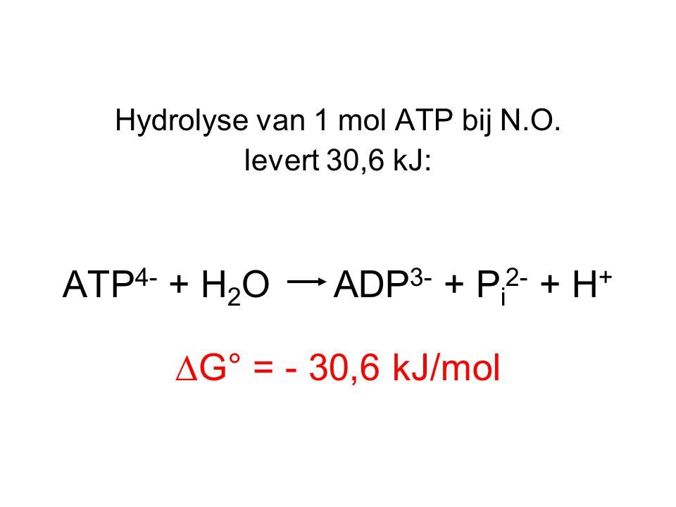 Hydrolyse van 1 mol ATP bij N.O.