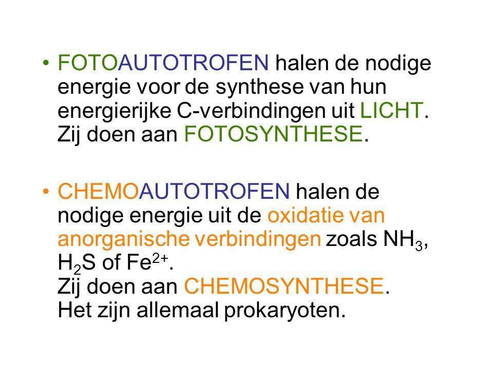 FOTOAUTOTROFEN halen de nodige energie voor de synthese van hun energierijke C-verbindingen uit LICHT. Zij doen aan FOTOSYNTHESE.