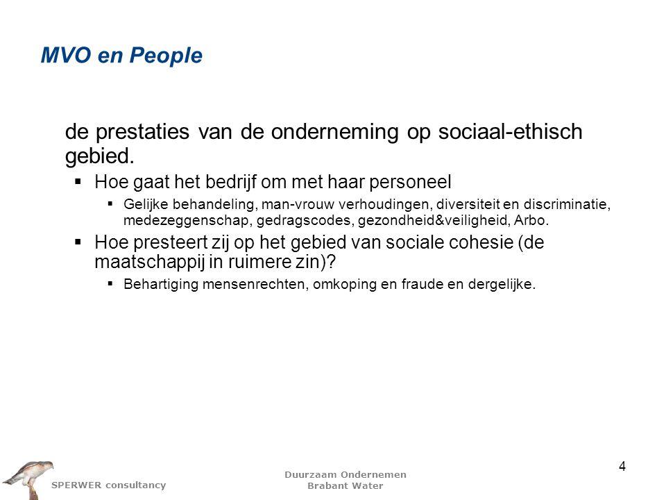 de prestaties van de onderneming op sociaal-ethisch gebied.