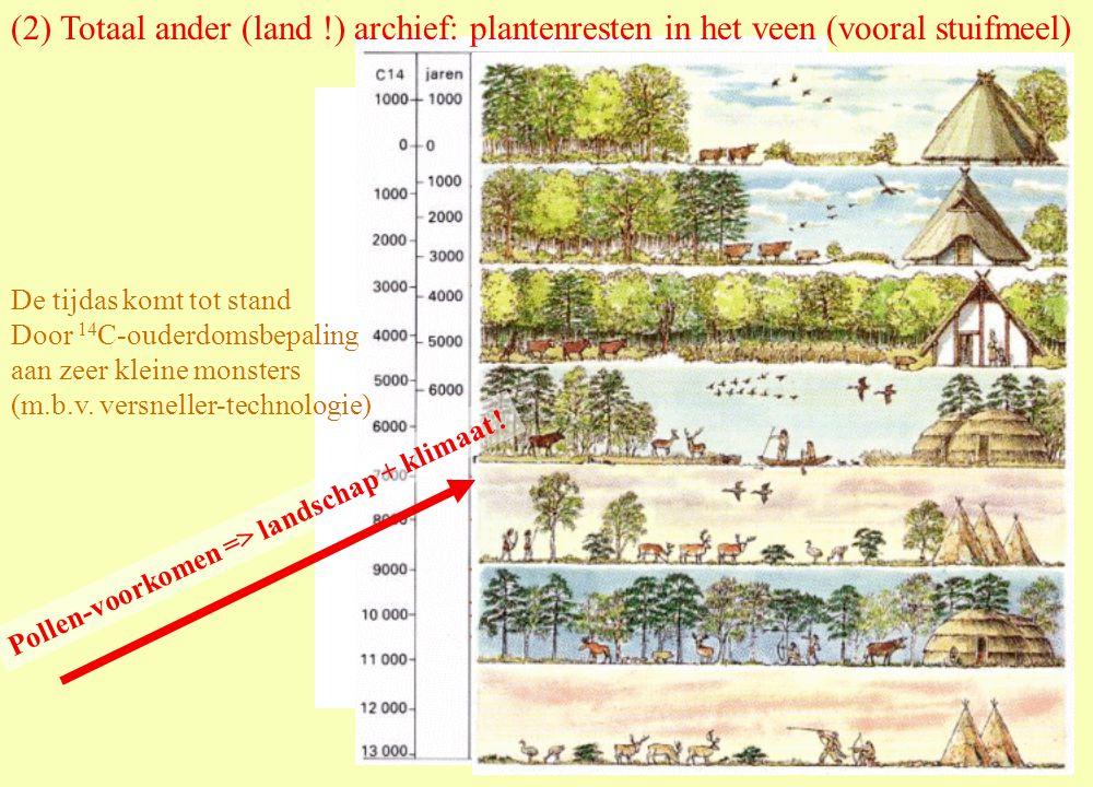 Pollen-voorkomen => landschap + klimaat !