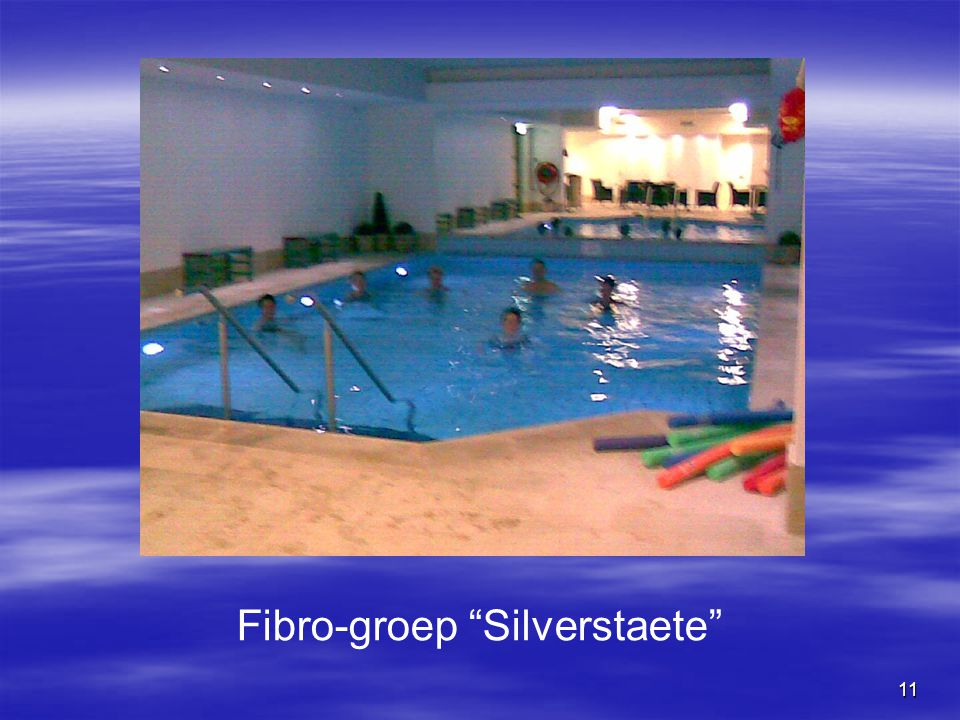 Fibro-groep Silverstaete
