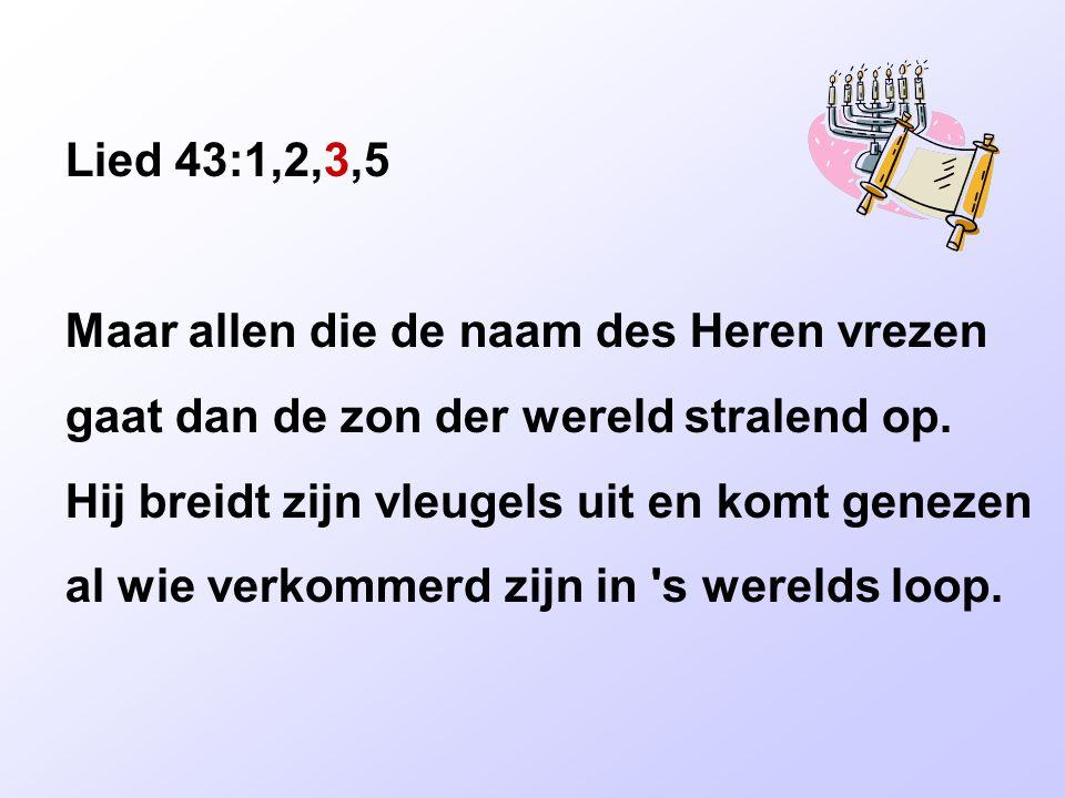 Lied 43:1,2,3,5 Maar allen die de naam des Heren vrezen