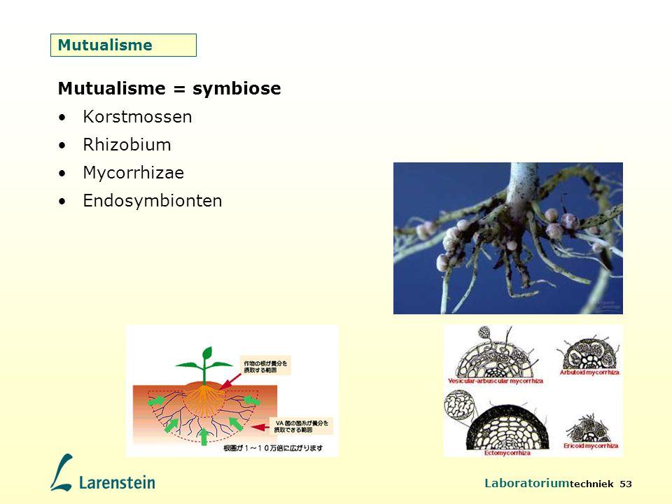 Mutualisme = symbiose Korstmossen Rhizobium Mycorrhizae Endosymbionten