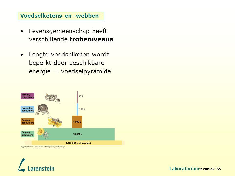 Voedselketens en -webben