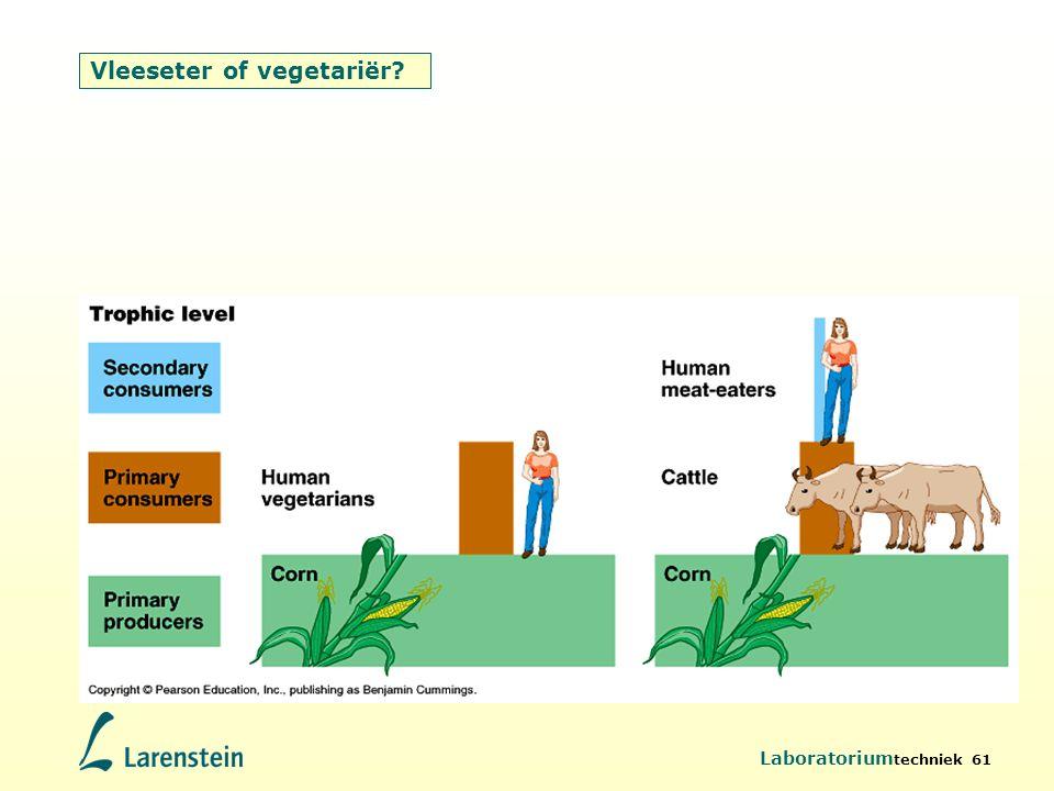 Vleeseter of vegetariër