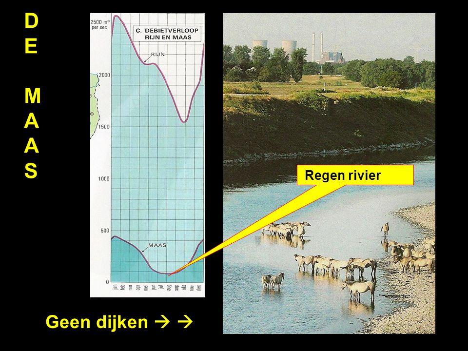 D E M A S Regen rivier Geen dijken  