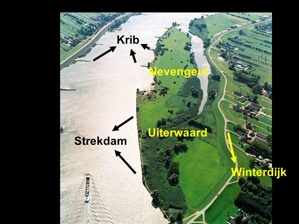 Krib Nevengeul Uiterwaard Strekdam Winterdijk