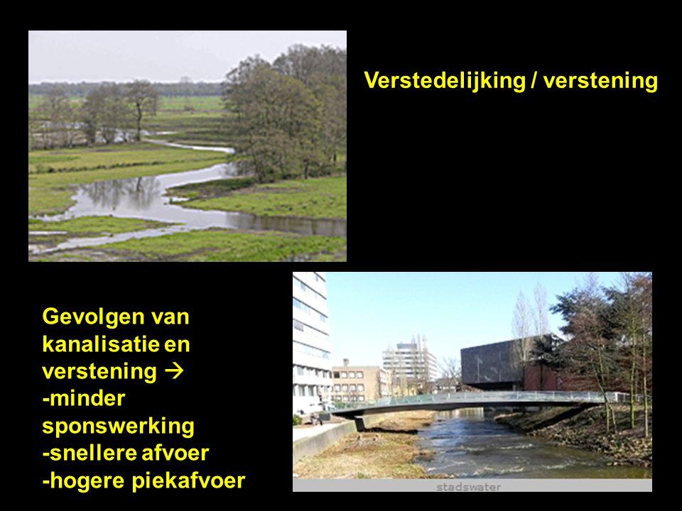 Verstedelijking / verstening