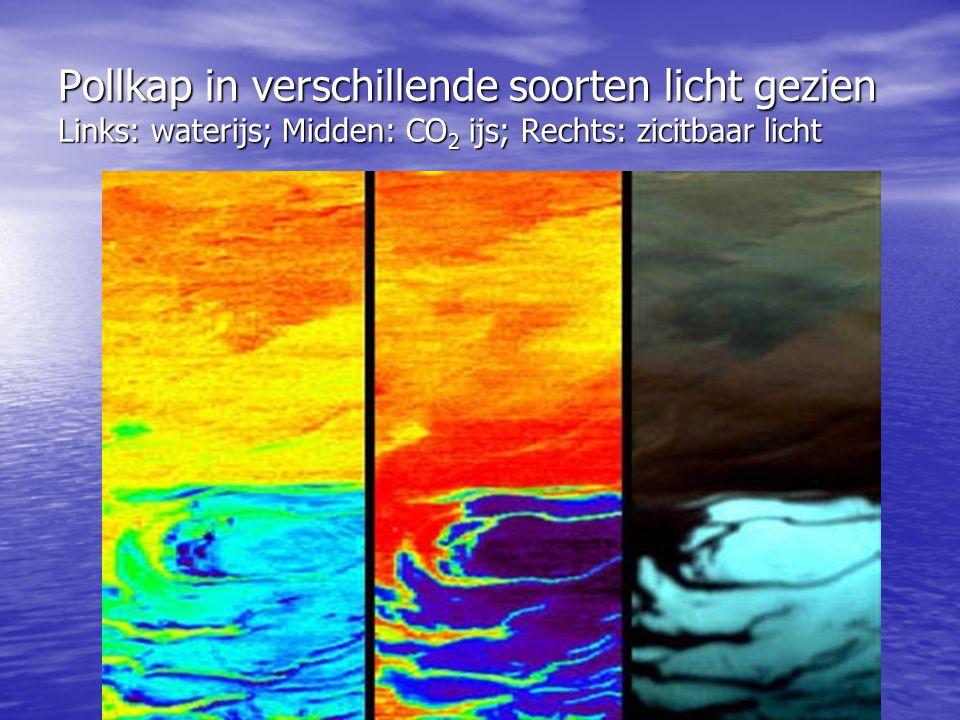 Pollkap in verschillende soorten licht gezien Links: waterijs; Midden: CO2 ijs; Rechts: zicitbaar licht