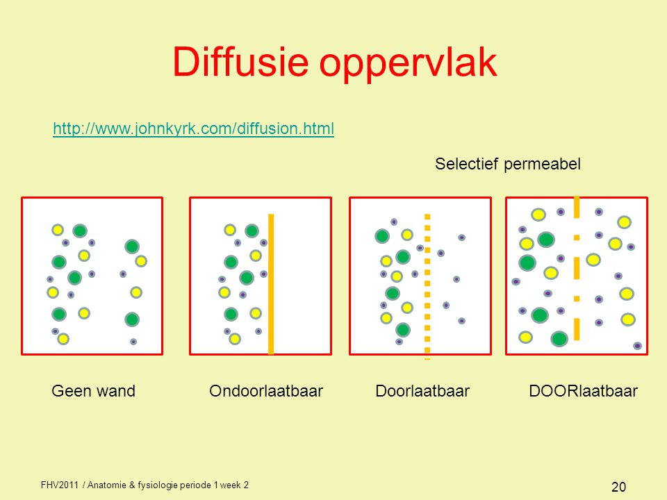 Diffusie oppervlak http://www.johnkyrk.com/diffusion.html