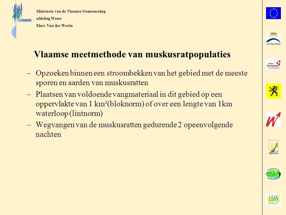 Vlaamse meetmethode van muskusratpopulaties