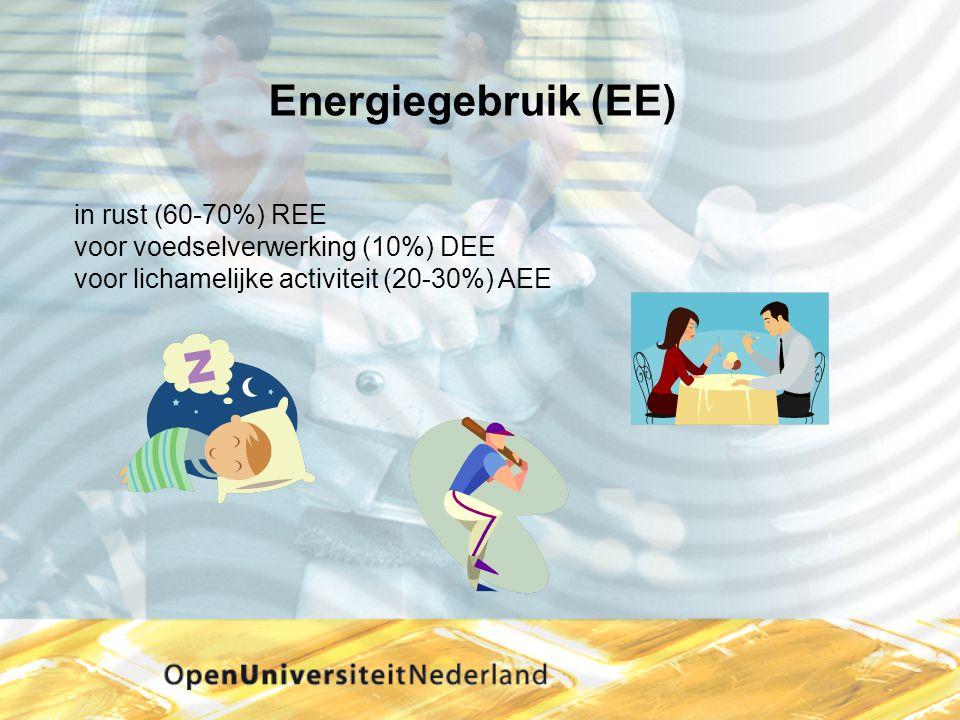Energiegebruik (EE) in rust (60-70%) REE