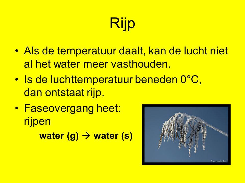 Rijp Als de temperatuur daalt, kan de lucht niet al het water meer vasthouden. Is de luchttemperatuur beneden 0°C, dan ontstaat rijp.
