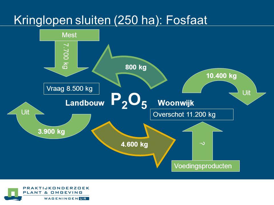 Kringlopen sluiten (250 ha): Fosfaat