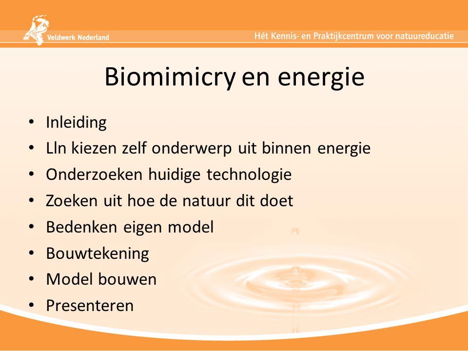 Biomimicry en energie Inleiding