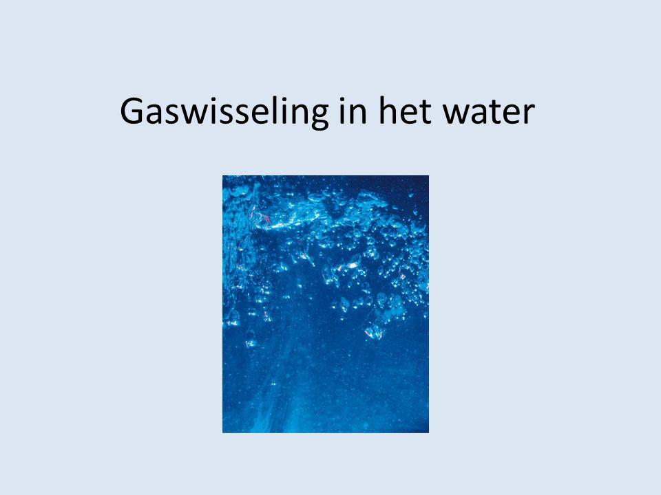 Gaswisseling in het water