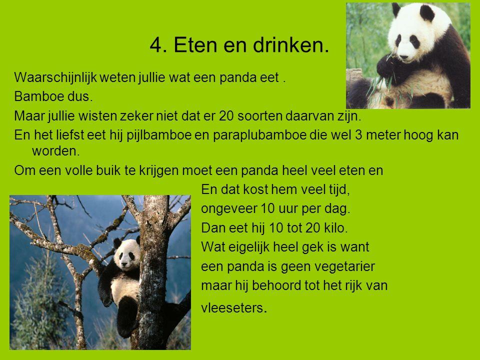 4. Eten en drinken. Waarschijnlijk weten jullie wat een panda eet .