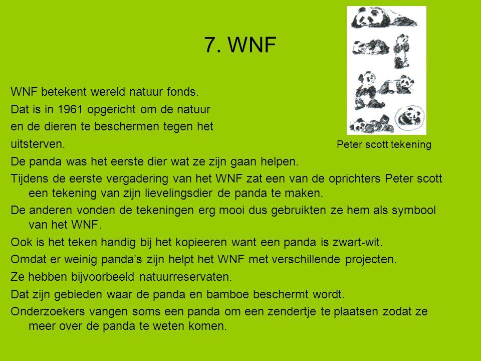 7. WNF WNF betekent wereld natuur fonds.