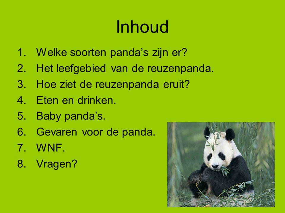 Inhoud Welke soorten panda's zijn er