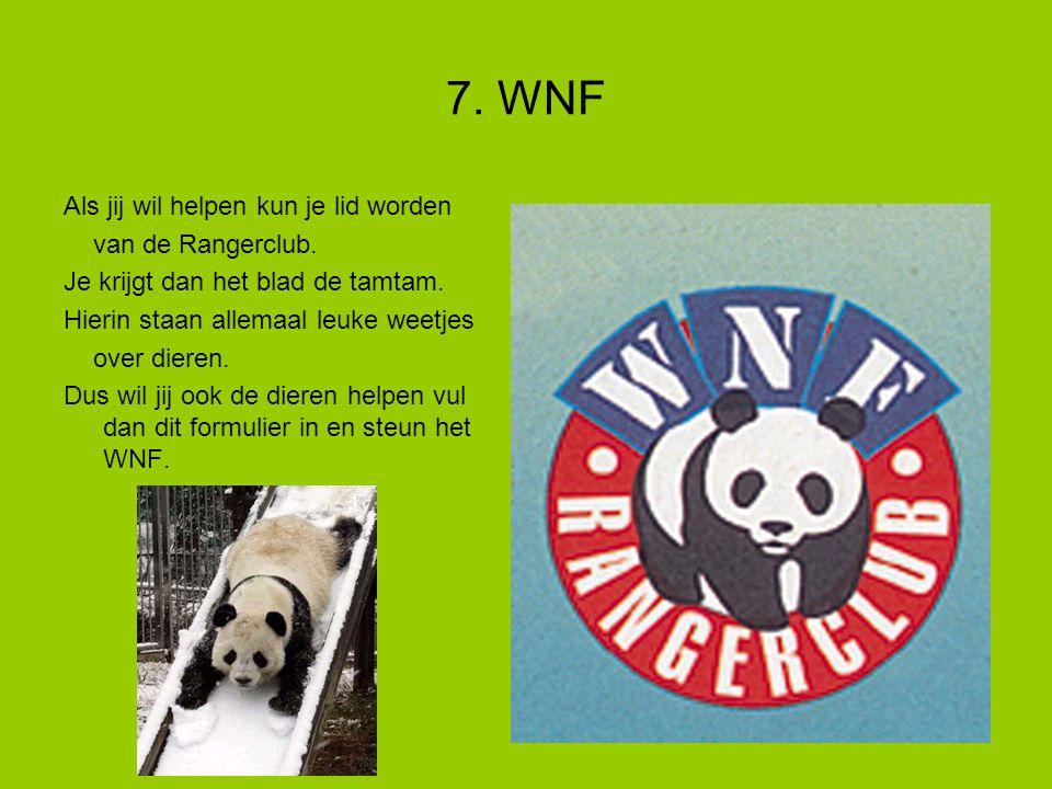 7. WNF Als jij wil helpen kun je lid worden van de Rangerclub.
