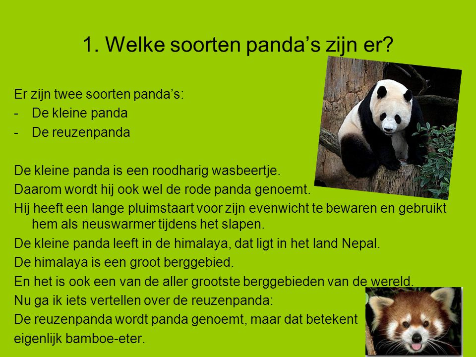 De panda van lisa van aarle ppt video online download for Welke woonstijlen zijn er