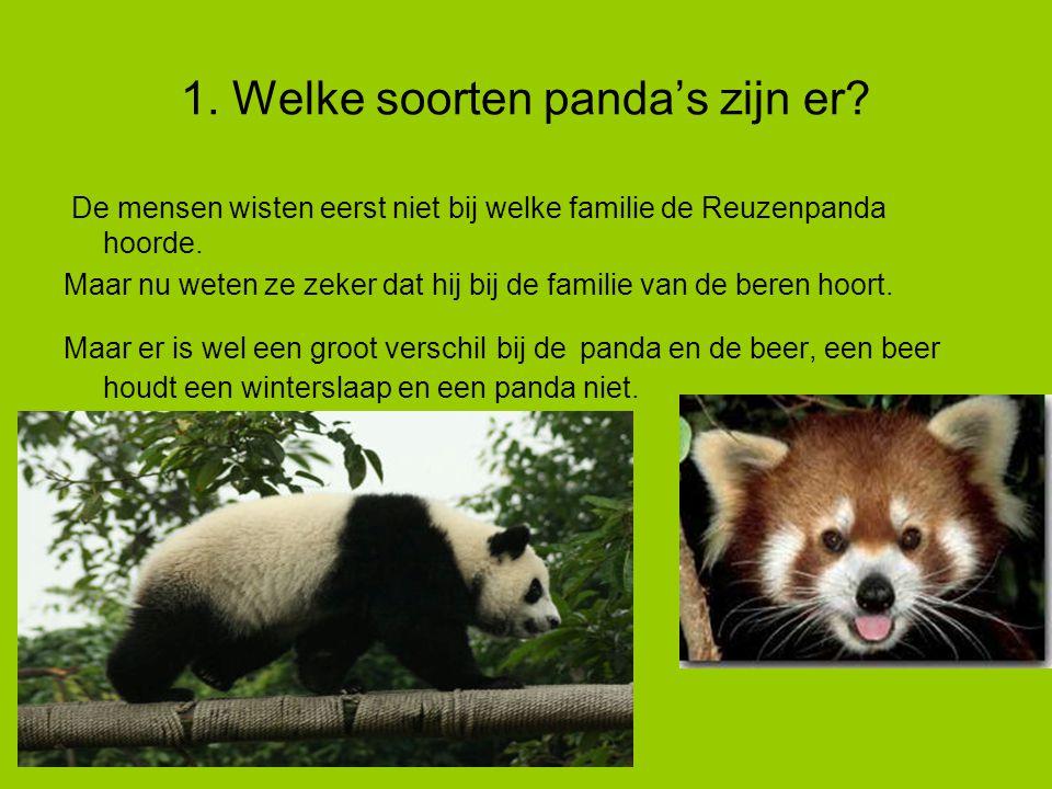 1. Welke soorten panda's zijn er