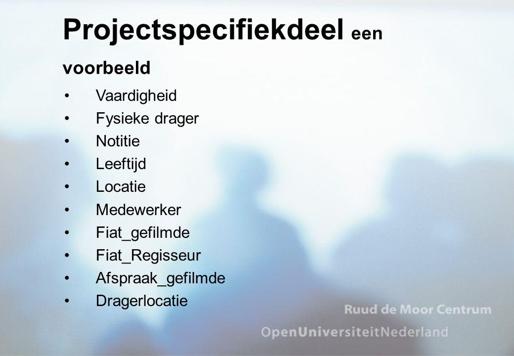 Projectspecifiekdeel een voorbeeld