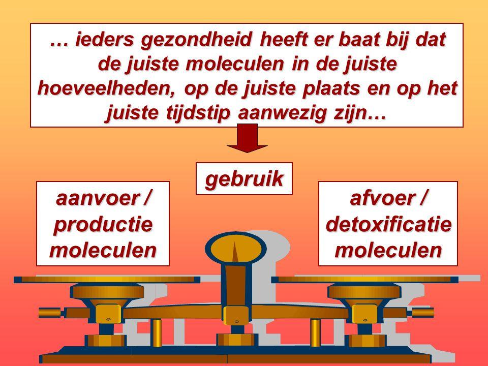 aanvoer / productie moleculen afvoer / detoxificatie moleculen