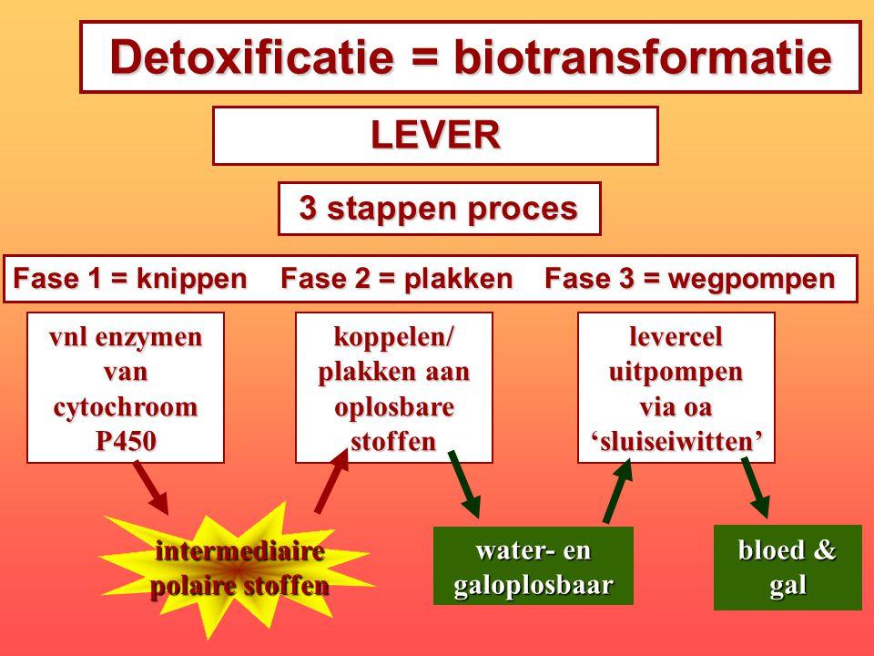 Detoxificatie = biotransformatie vnl enzymen van cytochroom P450